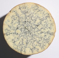 Blue Stilton Wheel